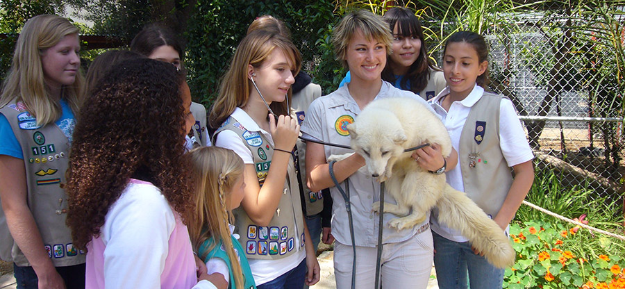 Girl Scouts with Arctic Fox