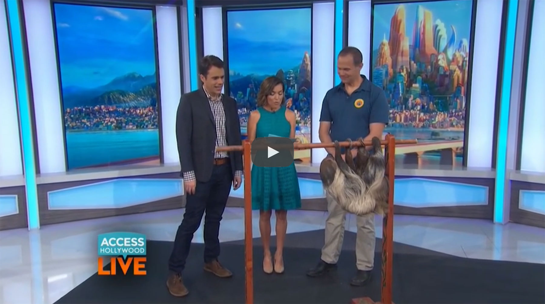 Access Hollywood - zootopia