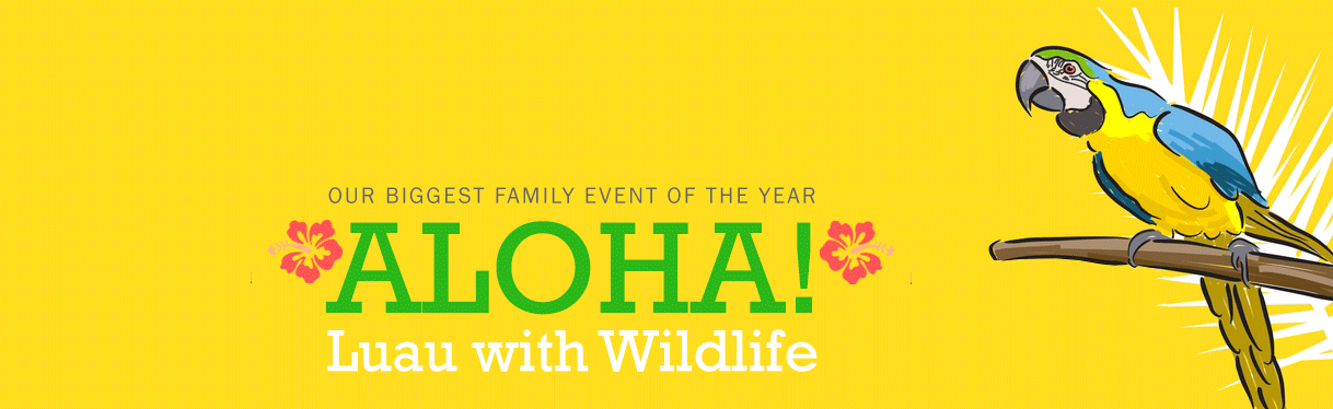 Luau With Wildlife 2017 - WLC