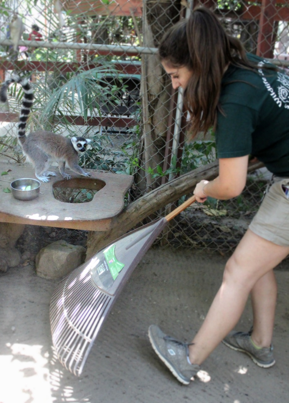 Cleaning Enclosures