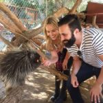 Wildlife Learning Center - porcupine with couple