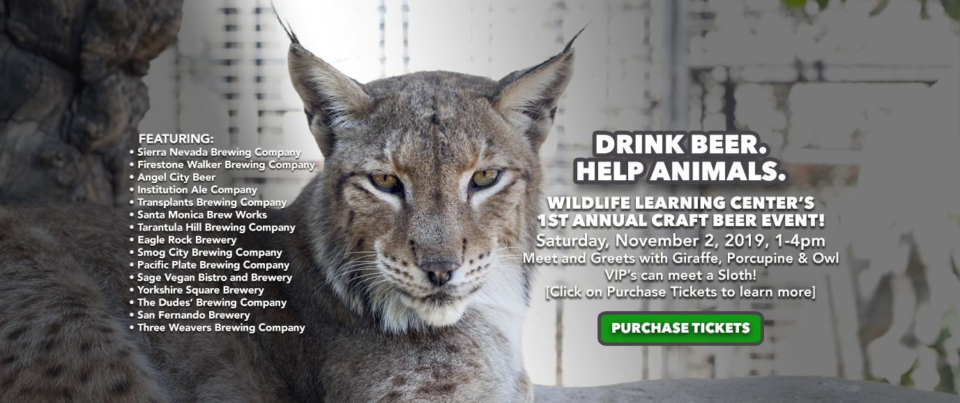 Wildlife Learning Center 1st Annual Beer Fest